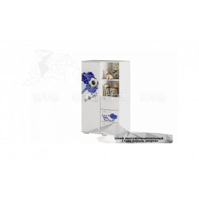 Шкаф многофункциональный ШК-10 Трио Король спорта от производителя BTS мебель
