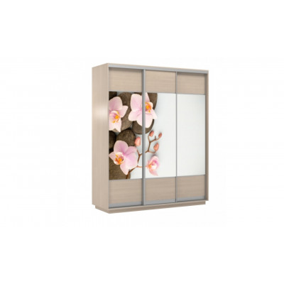 Шкаф-купе Честер 1800 дуб молочный, Орхидея