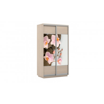 Шкаф-купе Честер 1200 дуб молочный, Орхидея