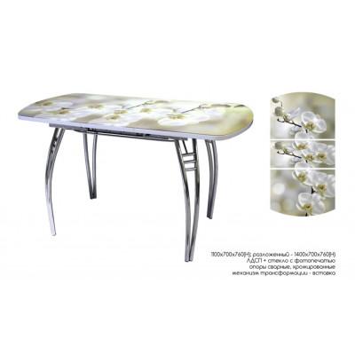 Стол обеденный раздвижной с фотопечатью Орхидея
